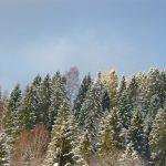 Widok z chaty w piękny zimowy poranek