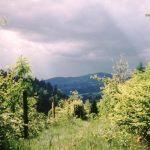 agroturystyka-chata-w-fiedorowie-okolica-09